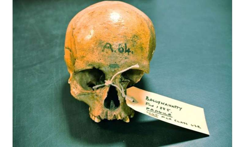Scientists sequence first ancient Irish human genomes