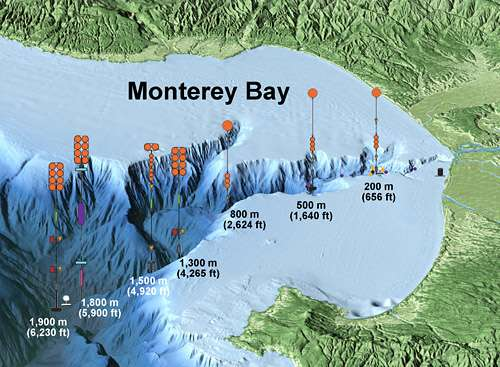 International experiment tracks underwater avalanches in Monterey Canyon