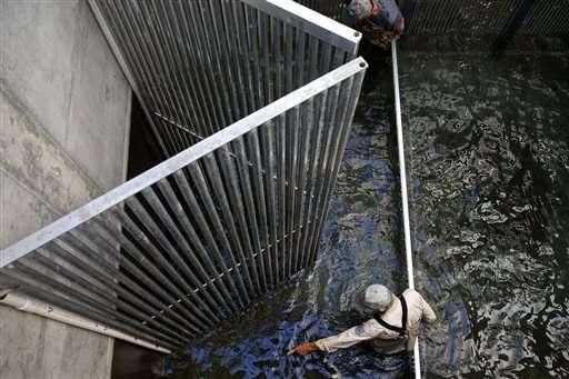 $700 million plan to help salmon habitat faces new challenge