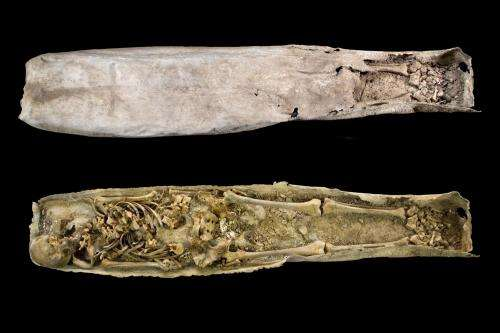 Archaeologists open the mysterious lead coffin found buried just feet from the former grave of King Richard III