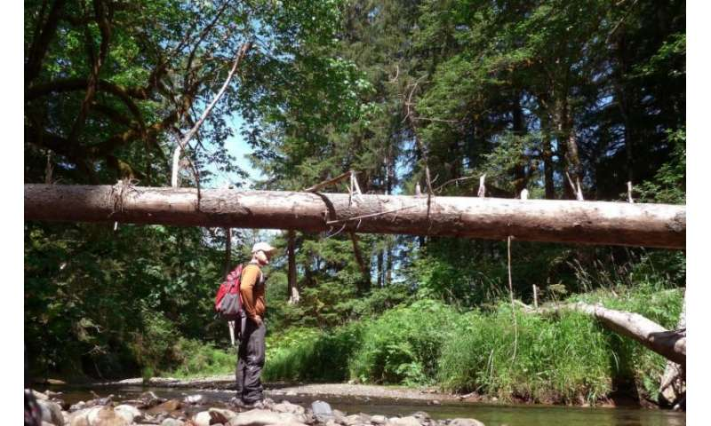 Clemson scientists study conservation easements in the Appalachians