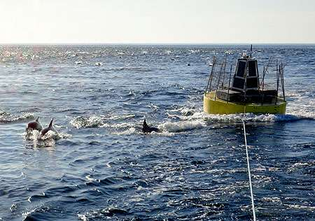 Experimental wave-power buoy survives winter in Monterey Bay