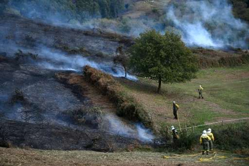 Firefighters work in an area affected by wildfires near the northern Spanish Basque town of Berango on December 28, 2015
