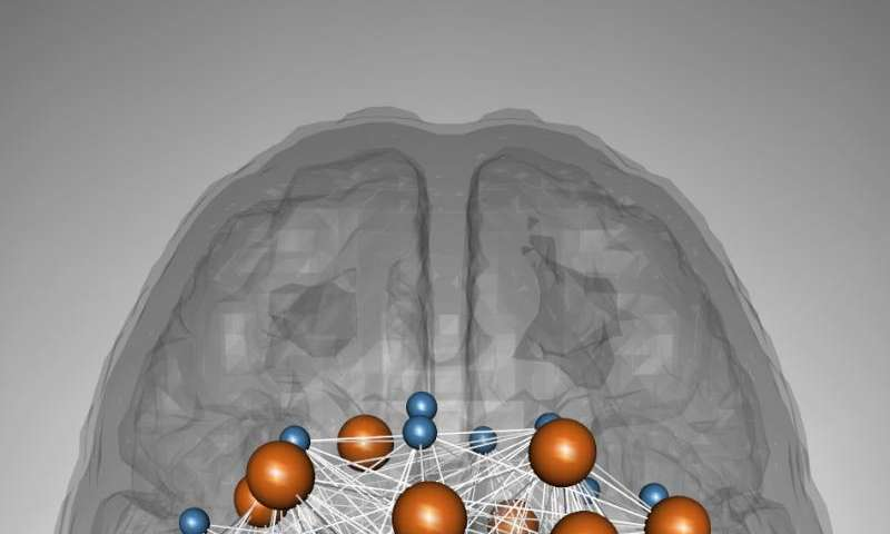 Study finds genetic convergence between cognition and neurodevelopmental disorders
