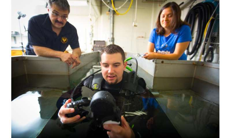 Researchers to study dangers of diver dehydration for U.S. Navy