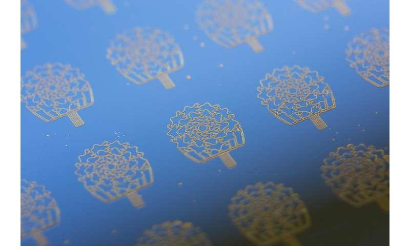 Bioengineers cut in half time needed to make high-tech flexible sensors