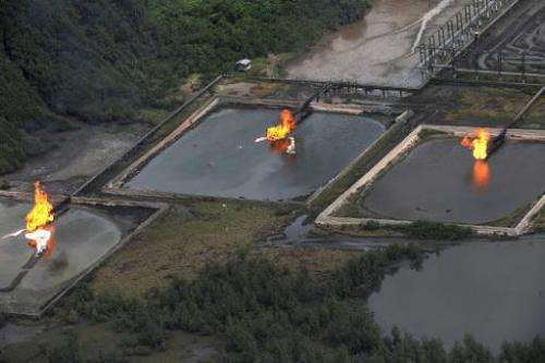 File picture shows gas flares at the Shell Cawtharine Channel, Nembe Creek in the Niger Delta