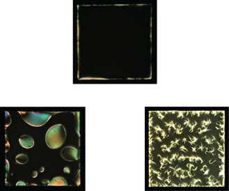 Liquid crystals show potential for detection of neuro-degenerative disease