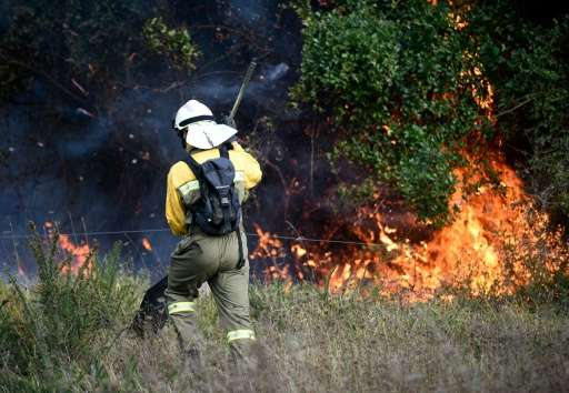 A firefighter tackles a blaze in an area affected by wildfires near the northern Spanish Basque town of Berango on December 28,