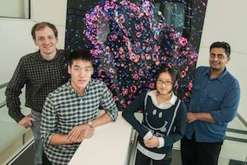 Researchers introduce improved injectable scaffold to promote healing