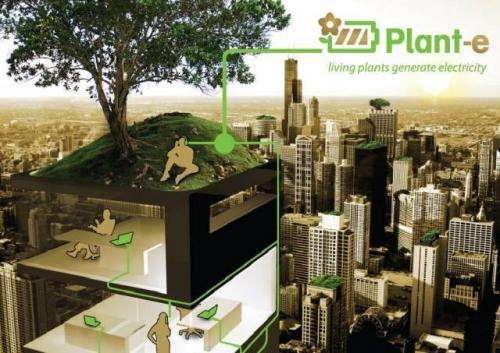 Plant-e makes street lights come alive from living plants