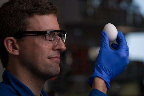 Chemists find a way to unboil eggs