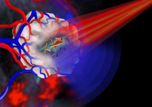 Gold nanotubes launch a three-pronged attack on cancer cells