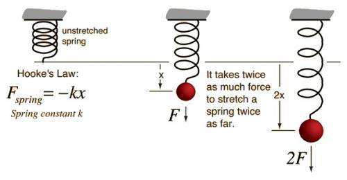 What is Hooke's Law?