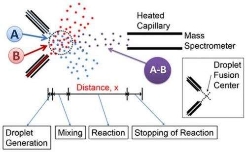 New mass spectrometry technique studies kinetics of fast reactions
