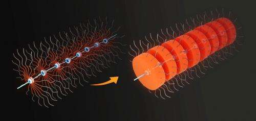 Nanoscale worms provide new route to nano-necklace structures