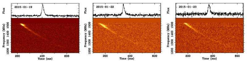 Mystery of peryton reception at Australian observatory solved: It's from microwave ovens