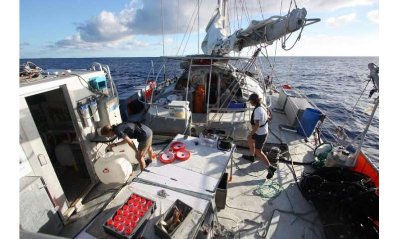 New insights into global ocean microbe-virus interactions, drivers of Earth's ecosystems