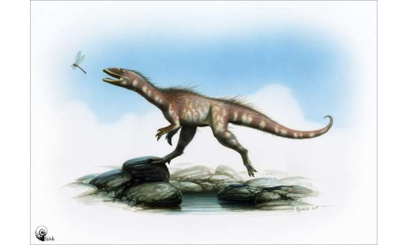 New dinosaur discovered in Wales