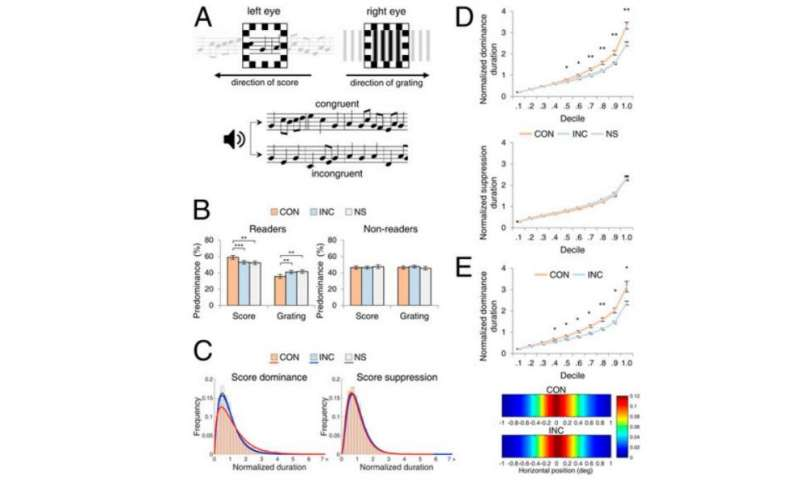 How the brain combines information across sensory modalities