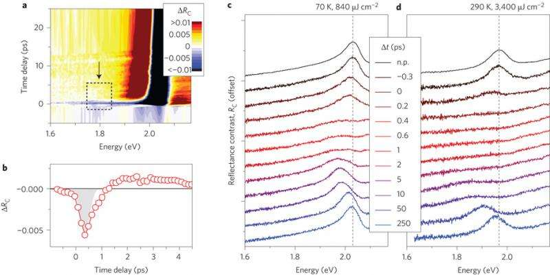 Researchers successfully control optical response of atomically thin materials on short timescale