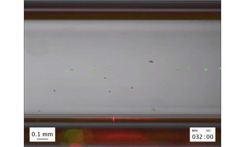 Stanford team develops technique to magnetically levitate single cells