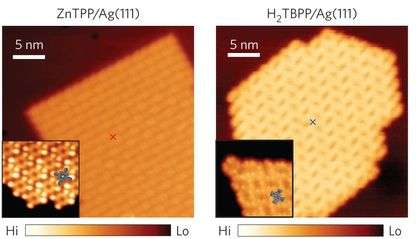 Tip-enhanced Raman scattering can distinguish between two structurally similar adjacent molecules
