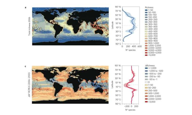Climate change will bring greater biodiversity to world seas