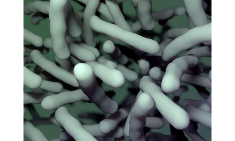 Drug disarms deadly C. difficile bacteria without destroying healthy gut flora