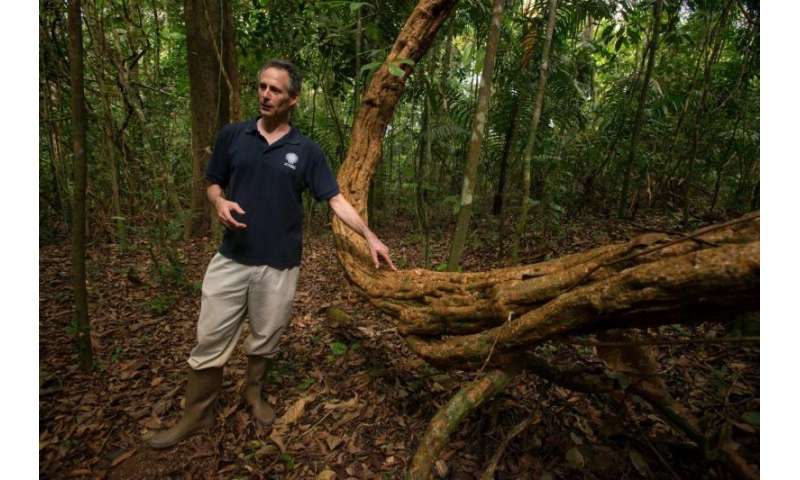 Smithsonian scientists say vines strangle carbon storage in tropical forests