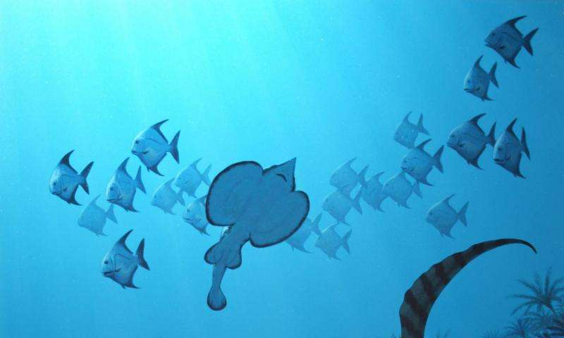 Ancient mass extinction led to dominance of tiny fish, Penn paleontologist shows