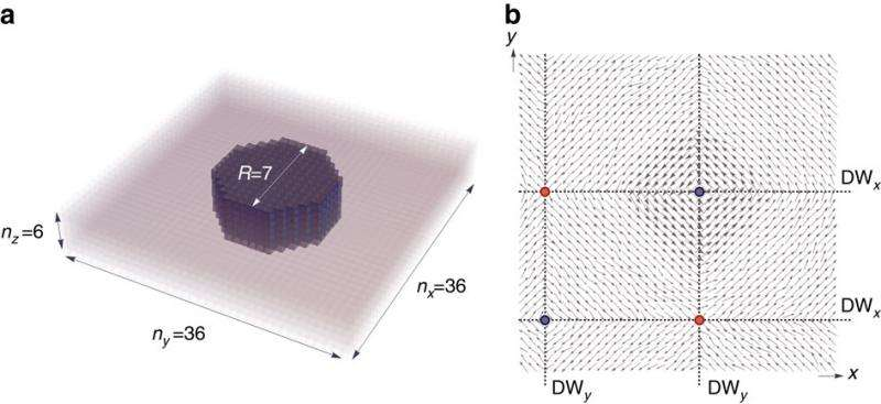 Physicists show skyrmions can exist in ferroelectrics