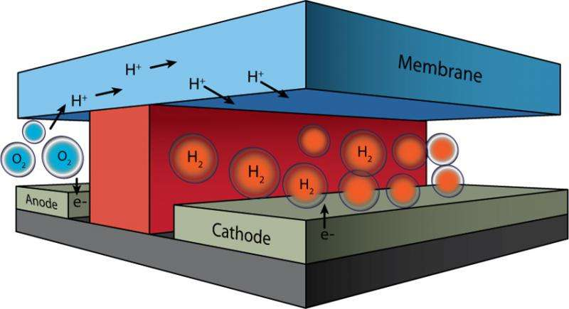 Microfluidics field aids quest for artificial photosynthesis