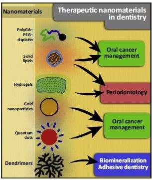 Nanotechnology inspires next-generation dental materials