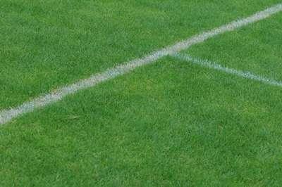 Study considers football behaviour legislation