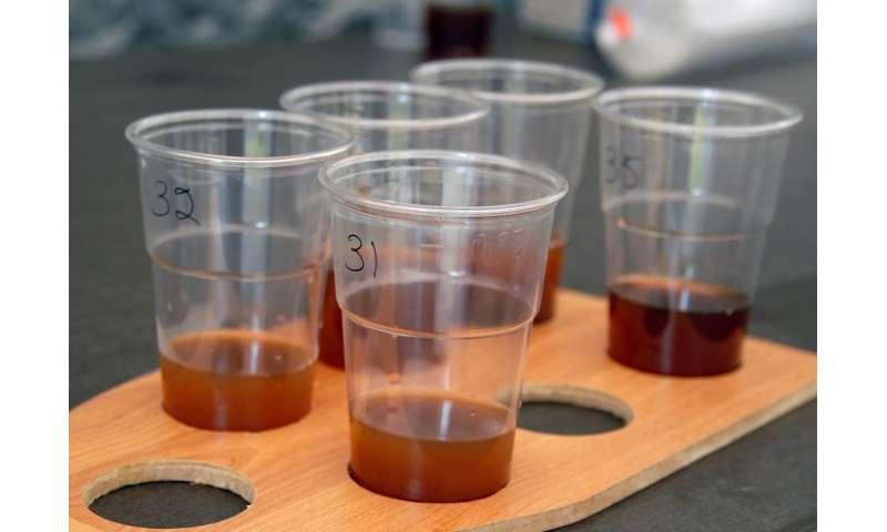 Researchers scientifically characterize Finnish sahti beer