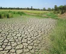 Research reveals how global warming will impact Earth's carbon cycle