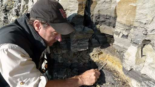 Researchers say new dinosaur found in northern Alaska