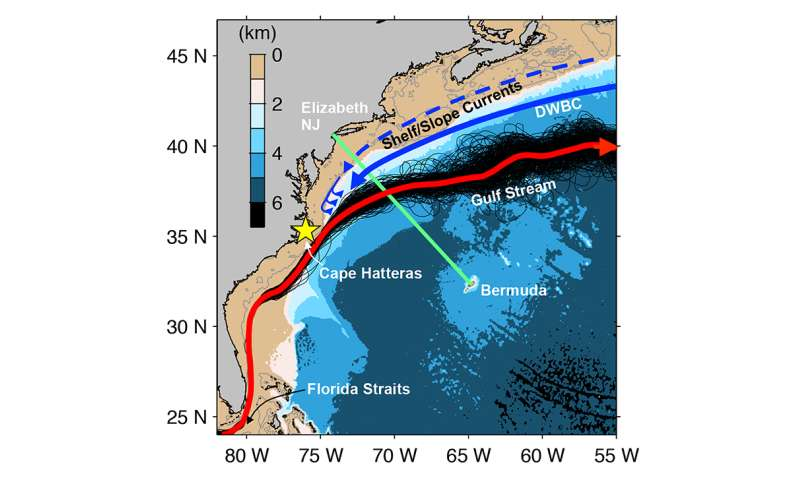 Accelerated warming of the continental shelf off northeast coast
