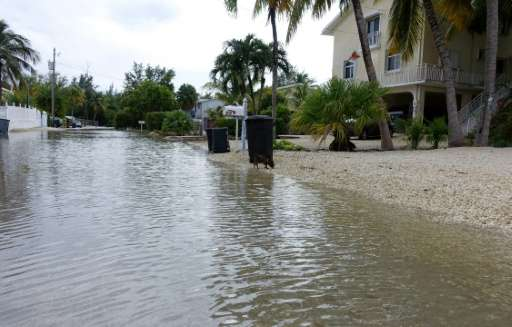 Image result for flooded house florida