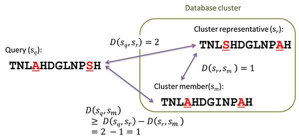 A faster sequence homology search algorithm based on database subsequence clustering