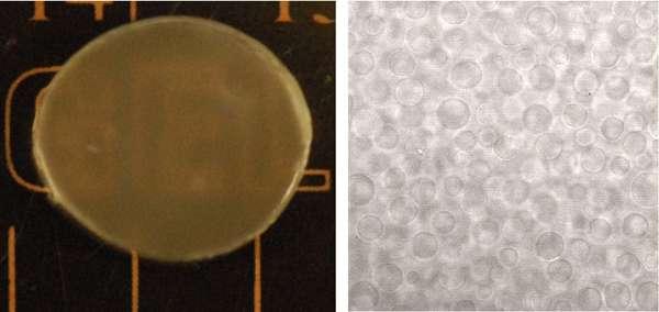 A gel that can make drugs last longer