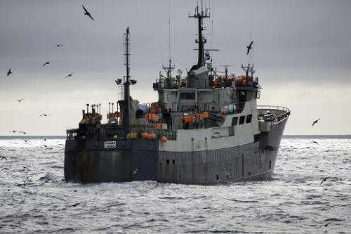 A handout photo from Sea Shepherd taken on December 17, 2014 shows the Nigerian-flagged boat, the Thunder, in the Southern Ocean
