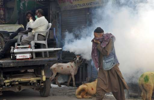 A muslim livestock vendor covers his face, as Indian Municipal corporation workers spray DDT to prevent the spread of mosquito-b