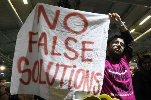 An activist of a non-governmental organization protests with a banner reading 'No false solutions' during the UN conference on c
