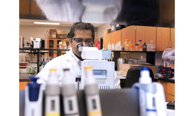 Ancient wisdom, modern technology team up to fight disease