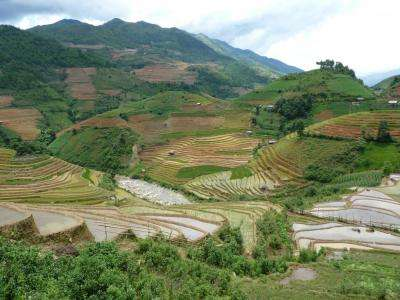 Assessing ecosystem services: Increasing the impact on decision making