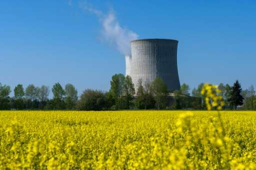 A top climate scientist says nuclear power must become a core part of the global energy mix, alongside renewables, in order to r