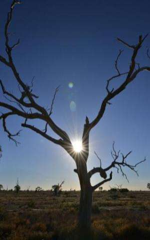 Australia had its hottest year on record in 2013, while last year was third warmest