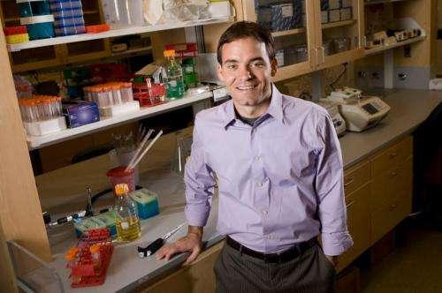 Bacterial defense mechanism targets duchenne muscular dystrophy